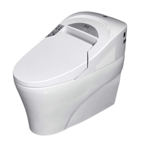 Best High End Toilet 2020